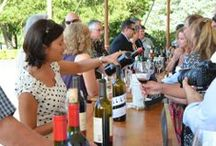 Wine Country Events / Wine tasting events, food & wine festivals, arts, film festivals events around wine country  / by WineCountry.com (Official)
