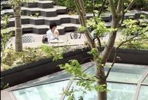 Japan / by Ocjohn Worldwide