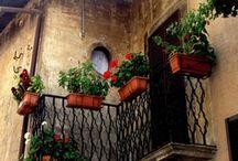 Scanno, L'Aquilla, Italy /  Martella Geneology, My Great Grandparents' Village / by Barbara Romander
