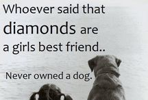 ♥Dog Quotes & Sayings ♥: / by Alexis Leigh
