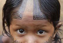 Brazil and the Amazonas / by Tibet Tenzin