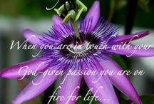 Flowers / I <3 flowers!! / by Malinda Baggett