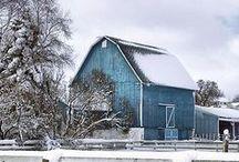 Winter / by Malinda Baggett