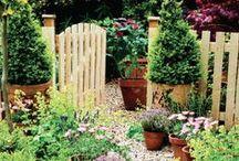 Garden / by Rozalyn Littler