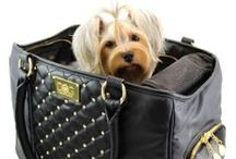 ♥ Luxury Dog Carriers / by Dog Bar