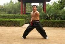 AWMA Blog for the Martial Artist in you / by Asian World Of Martial Arts