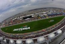 Daytona Beach NASCAR / by The Shores Resort & Spa