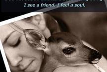 Animal Love & Health / by Jana