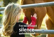 ANIMALS...Horses 'n Kinfolk 2 / by Ronnie Turner