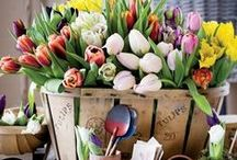 EASTER / by Deliciously Savvy