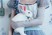 ♕ ♠ Alice in Wonderland ♣ ♧ / ♥ / by Gabriella Laura
