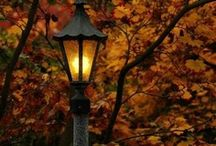 Autumn / fall is my favorite  / by Wendy Simpson