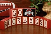Ohio state  / by Lisa Wren