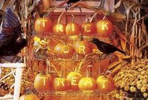Halloween / by Christy Birkey