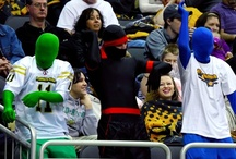 Pittsburgh Power Fans / by Pittsburgh Power