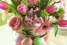 Holidays - Easter / by Alisha Alvey