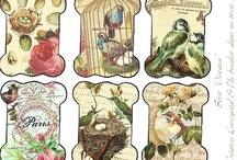 Cosiendo, bordando y tejiendo ✿ڿڰۣ✿Sewing & Embroidery & Knitting & Crocheting / Todo lo concerniente a la costura, bordados, tejidos y cosas que se pueden hacer. All about sewing, embroidery, knitting & crocheting and things you can do. / by ❀༻ Paulina Sanhueza ℛ. ༻❀