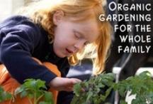 Garden Moms! / by SocialMoms