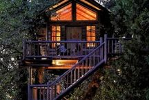 Tree Houses / Always wanted to live in a tree! / by Nicole Mccarroll
