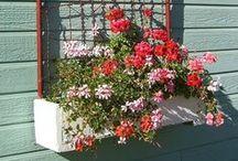 Garden Inspiration / by Phineas Swann Bed & Breakfast Inn
