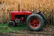 FARM STUFF / by Gerald Teskey