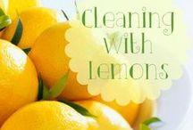 Clean, Maintain & Organize / by Scarlett Litherland