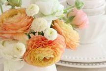 Flower Arrangements / by Jennifer Shimola