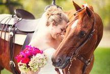 Wedding  / by Jaclyn Skogheim