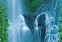 Oregon Waterfalls / by LauraH