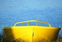 Color - Blue & Yellow / All shades of blue & yellow color - Tutte le sfumature del colore blu & giallo / by Alda Carla Sirombo