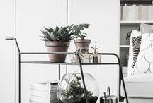 Flowers & Plants / by Kuan Hua
