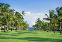 Nisbet Plantation Beach Club, Nevis / Explore Nisbet Plantation Beach Club on #Nevis, one of the #Caribbean's best resorts. http://nisbetplantation.com / by Nisbet Plantation Beach Club