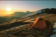 Camping/Hiking / by Stephanie Donohue