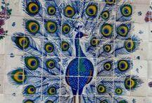 Peacock paradise / by Sarva Mangala