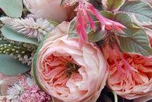 In Bloom / by Emily Men