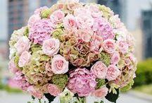 Flowers / by Brocket Hall