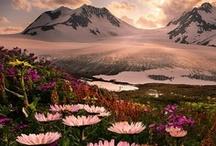 Nature / by Ramon
