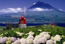Açores, grupo de ilhas no Oceano Atlântico / by Filomena Penland