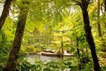 Garten-Inspiration... / Die meisten Pins bleiben hier nur kurzfristig & werden noch passend einsortiert.... / by Bianca T.
