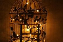 Bird cages / by Dorz Kingsley