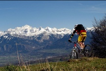 Mountain Biking / Everything Mountain biking / by Dave Waddling
