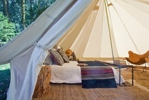 Glamping & Wanderlust / by Lilac And Lilies Boutique