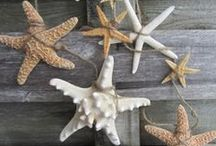 Beachy / Coastal Inspiration / Beach and Coastal Inspired Home Decor / by A Little CLAIREification