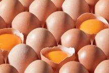huevos / by gisela diaz