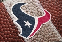 Houston Texans / by This & That