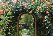 Great Gardens / Plants and creativity come together as one / by Secret Sunrise