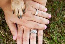 ❥ One day .....a wedding!! ❥  / by Sophia M.