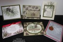 Ornamental Pines Stamp Set by Stampin' Up! / Set of 6 stamps not just for Christmas great for masculine cards too Wood-Mount #15104 $25.95 Clear-Mount #135107 $18.95 / by Linda Bauwin