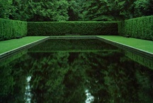 Gardens Contemporary / by Chris Smit