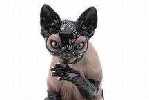 Cat Lady / by Teri Jasper